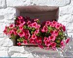 Puglia-Beauty-bigstock--175141375