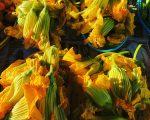 zuchinni-flowers