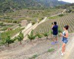 Catalonia Wine Tour (13)