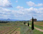 Catalonia Wine Tour (15)