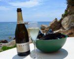 Catalonia Wine Tour (8)