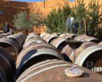 Catalonia Wine Tour Slider