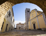 Wine Truffles Istria GALLERY (11)