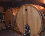 Wine Truffles Istria GALLERY (2)