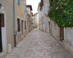 Wine Truffles Istria GALLERY (3)