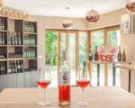 Wine Truffles Istria GALLERY (7)